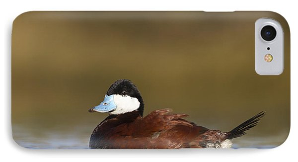 IPhone Case featuring the photograph Ruddy Duck  by Bryan Keil