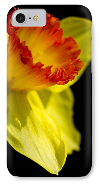 Ruffled Cup IPhone Case by Caitlyn  Grasso