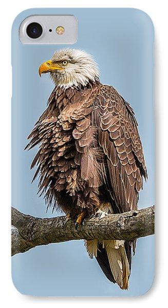 Ruffled Feathers Bald Eagle IPhone Case