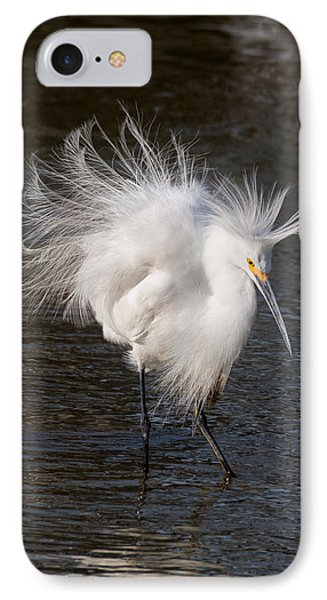 Ruffled Feathers IPhone Case