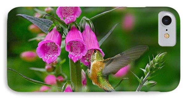 Rufous Hummingbird Phone Case by Thomas and Pat Leeson
