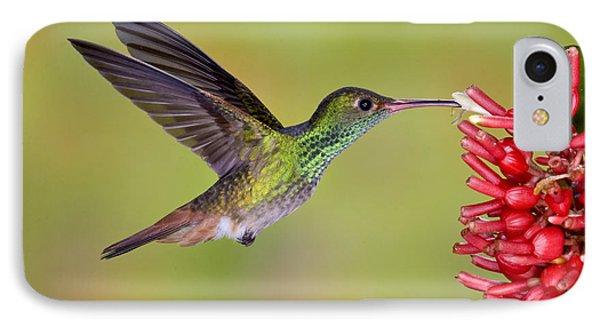 Rufous-tailed Hummingbird Phone Case by Anthony Mercieca