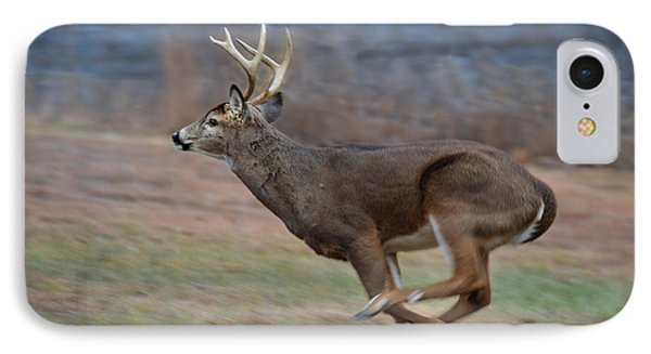 Running Buck IPhone Case by Amy Porter