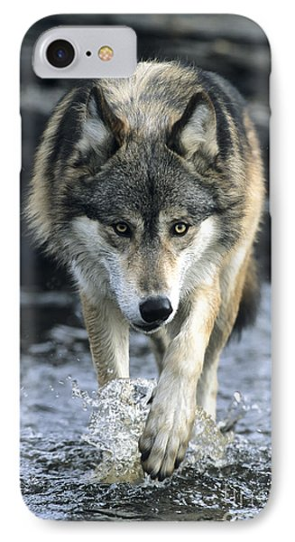 IPhone Case featuring the photograph Running Wolf by Chris Scroggins