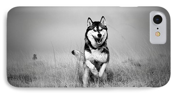 Running Wolf IPhone Case by Mike Taylor