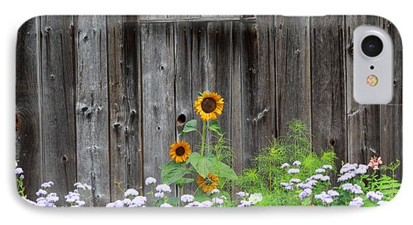 Rustic Barnwood Sunflower IPhone Case by Bill Wakeley