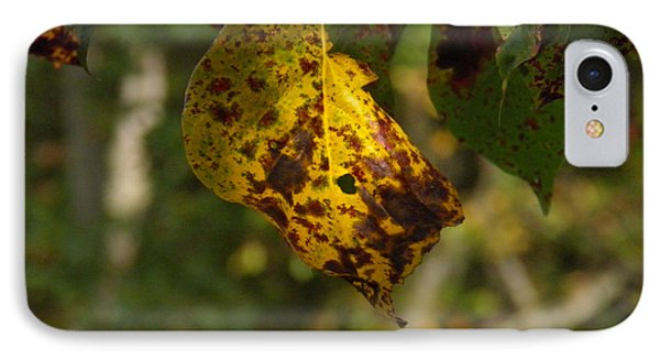 IPhone Case featuring the photograph Rusty Leaf by Nick Kirby