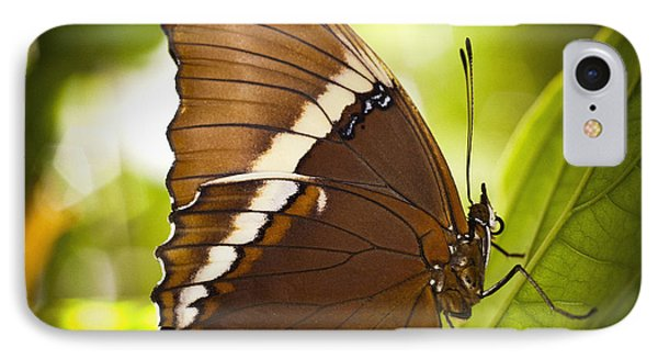 IPhone Case featuring the photograph Rusty Tip Butterfly by Bradley R Youngberg