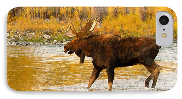 IPhone Case featuring the photograph Rutting Bull by Aaron Whittemore