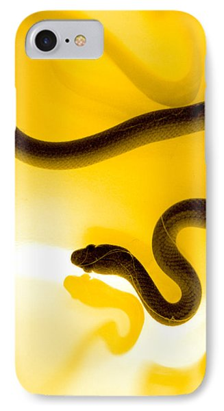 S IPhone Case by Holly Kempe