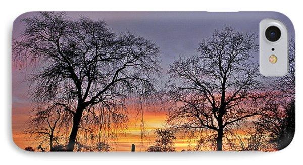 Sacramento Sunset IPhone Case by Sherry Flaker