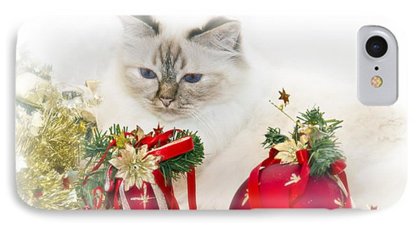 Sacred Cat Of Burma Christmas Time II Phone Case by Melanie Viola