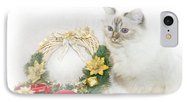 Sacred Cat Of Burma Christmas Time Phone Case by Melanie Viola