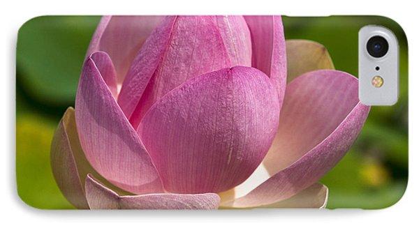 Sacred Lotus IPhone Case