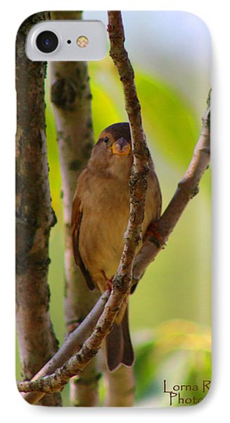 IPhone Case featuring the photograph Safe Refuge by Lorna Rogers Photography