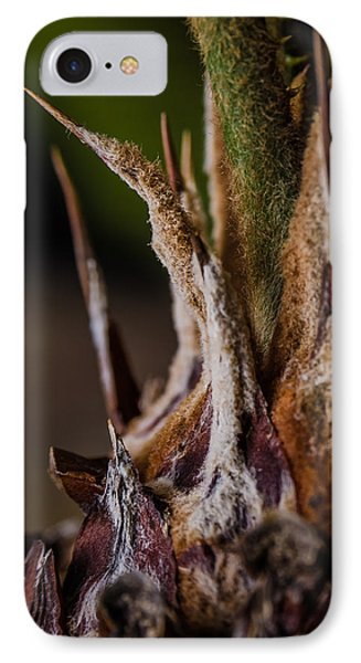 Sago Palm 1 IPhone Case by Frank Mari