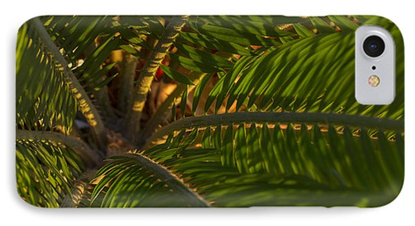 Sago Symmetry 1 IPhone Case by Scott Campbell