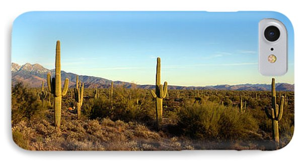 Saguaro Cacti In A Desert, Four Peaks IPhone Case by Panoramic Images