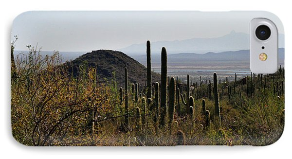 Saguaro Cactus And Valley IPhone Case by Diane Lent