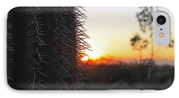 Sagurao Sunset IPhone Case by Gary Kaylor