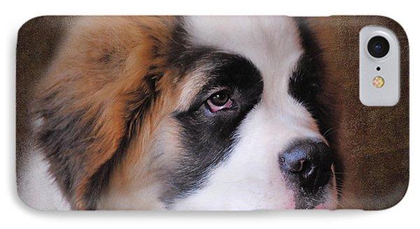 Saint Bernard Puppy IPhone Case by Jai Johnson