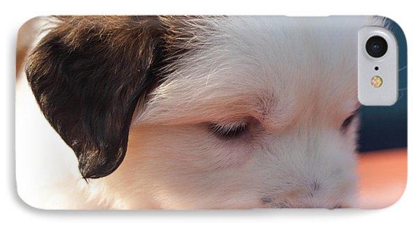 Saint Bernard Puppy Phone Case by Mechala  Matthews