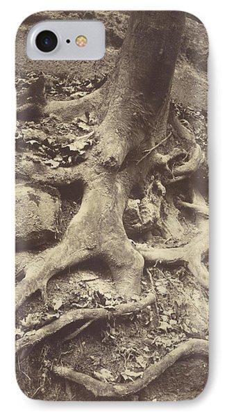 Saint-cloud, Tree Roots, Saint Cloud Park Eugène Atget IPhone Case by Litz Collection