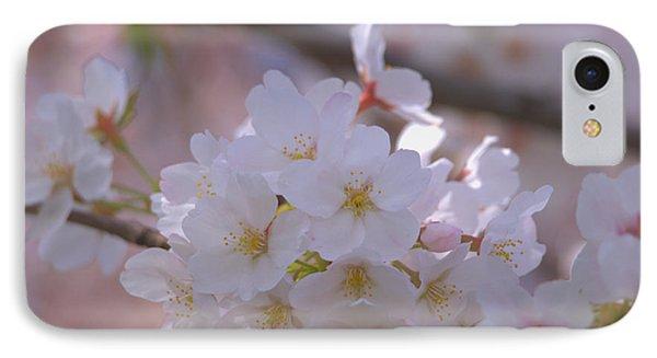 Sakura IPhone Case by Rachel Mirror