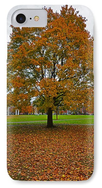 Salem Commons Foliage IPhone Case by Toby McGuire