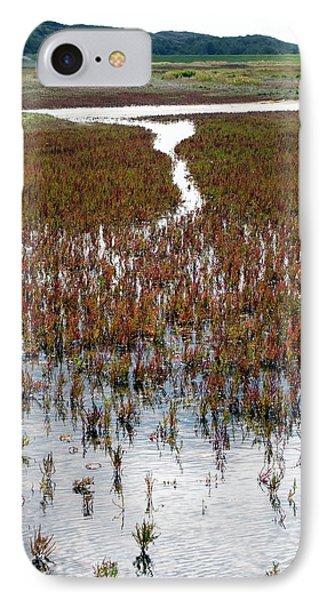 Salicornia On Salt Marsh IPhone Case