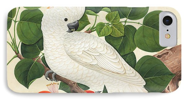 Cockatoo iPhone 7 Case - Salmon-crested Cockatoo by Natural History Museum, London