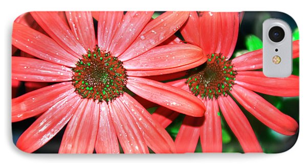 Salmon Daisy Phone Case by Aimee L Maher Photography and Art Visit ALMGallerydotcom