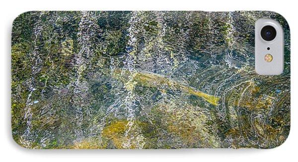 Salmon Art IPhone Case by Roxy Hurtubise