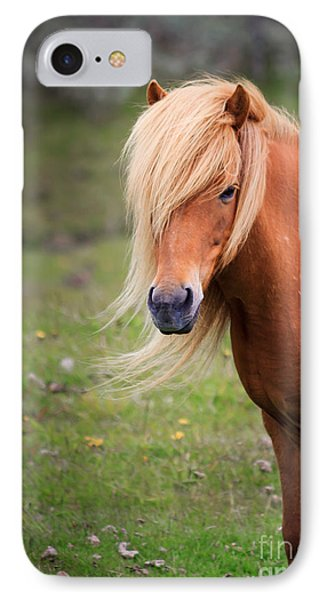 IPhone Case featuring the photograph Salon Perfect Pony by Peta Thames