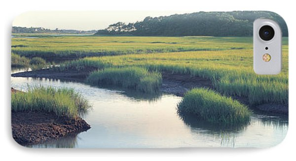 Salt Marsh Cape Cod Ma Usa IPhone Case