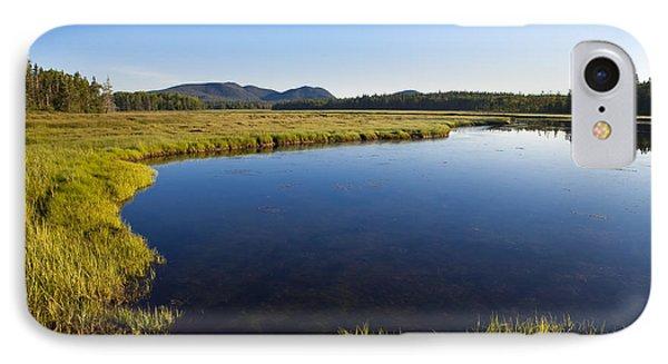 Salt Pond At Acadia IPhone Case