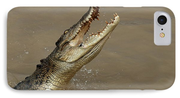 Salt Water Crocodile Australia IPhone Case by Bob Christopher