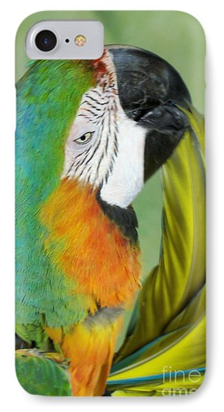 Salute I Am Blowing You A Kiss IPhone Case by Lingfai Leung