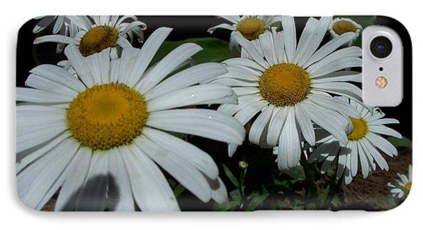 Salute The Sun IPhone Case by Marilyn Zalatan