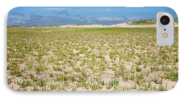 Samphire Growing On The Beach IPhone Case by Ashley Cooper