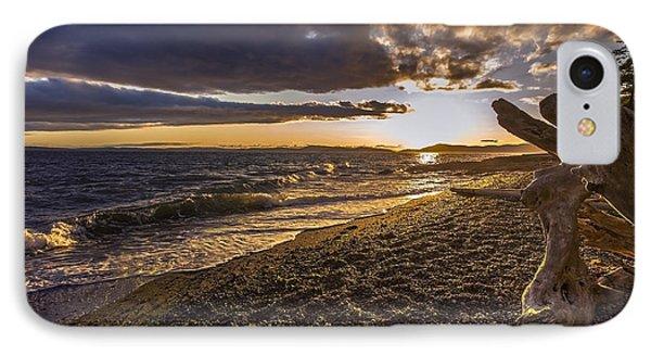San Juans Majestic Driftwood IPhone Case by Mike Reid