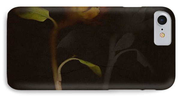 Sanctuary  IPhone Case by Mark Ross
