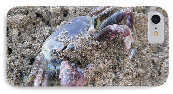 Sand Crab IPhone Case by Michael Krek