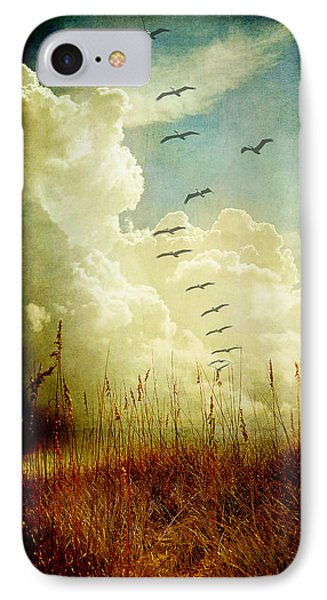 Sand Dunes And Pelicans IPhone Case by Linda Olsen