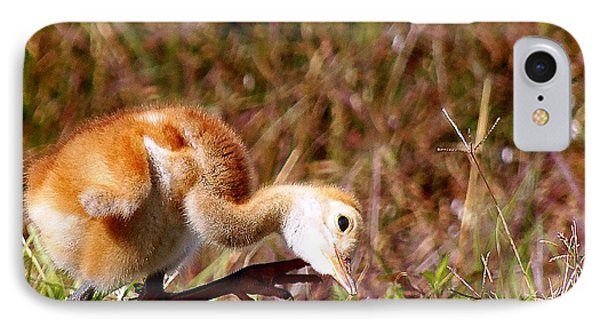 IPhone Case featuring the photograph Sand-hill Chick Scratching  by Chris Mercer