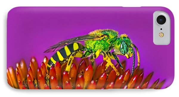 Sand Wasp IPhone Case by Marion Johnson