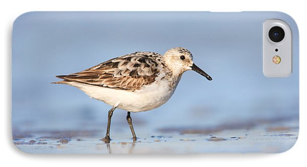 Sanderling Phone Case by Clarence Holmes