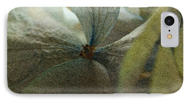 IPhone Case featuring the photograph Sandflower by WB Johnston