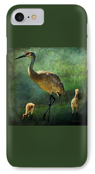 Sandhill And Chicks IPhone Case by Barbara Chichester