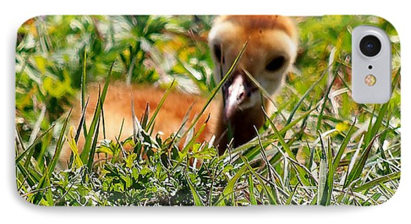 IPhone Case featuring the photograph Sandhill Chick 005 by Chris Mercer